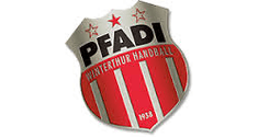 pfadi logo