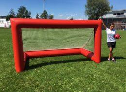 PneuMax_Goal